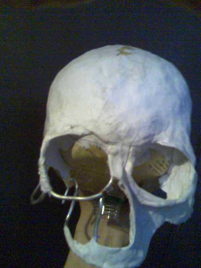 Как вырезать череп своими руками фото 262